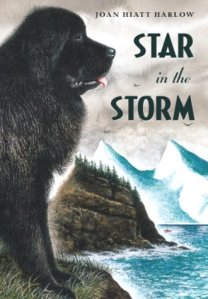 star_in_the_storm_cover